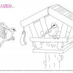 Kolorowanka karmnik dla ptaków