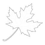 Kolorowanka jesienna – liść klonu
