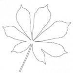 Kolorowanka jesienna – liść kasztanowca
